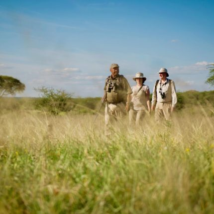 safaris en africa, Safari a pie en la Sabana