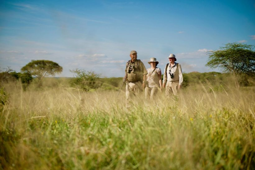 safaris en africa