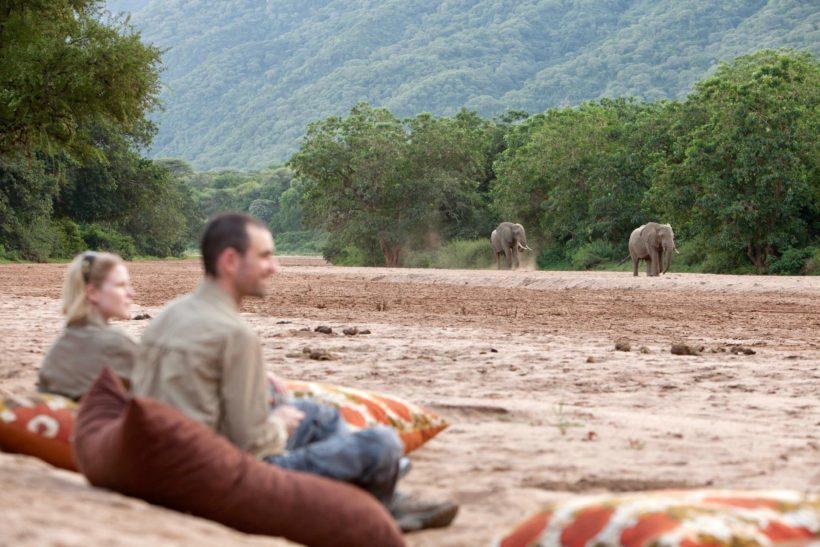 safari a pie novios
