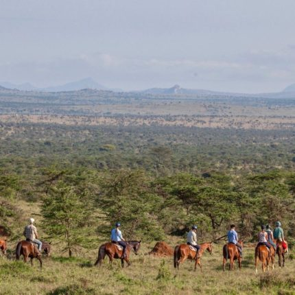 safaris a caballo africae travel
