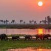 Parques nacionales del sur de Tanzania