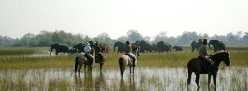 BOTSWANA A CABALLO OKAVANGO & KALAHARI (4)