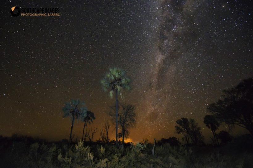 BOTSWANA EXPLORER SAFARI FOTOGRÁFICO CON MARIO MORENO (5)
