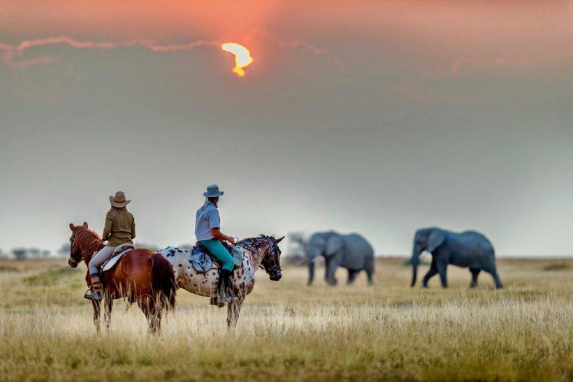 rutas y safaris a caballo en el kalahari