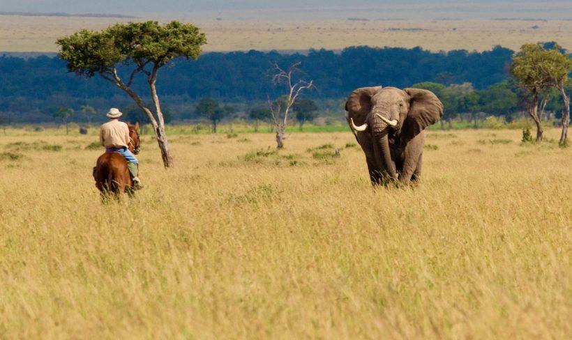 safaris en africa, safaris a caballo, Safari a Caballo en Masai Mara
