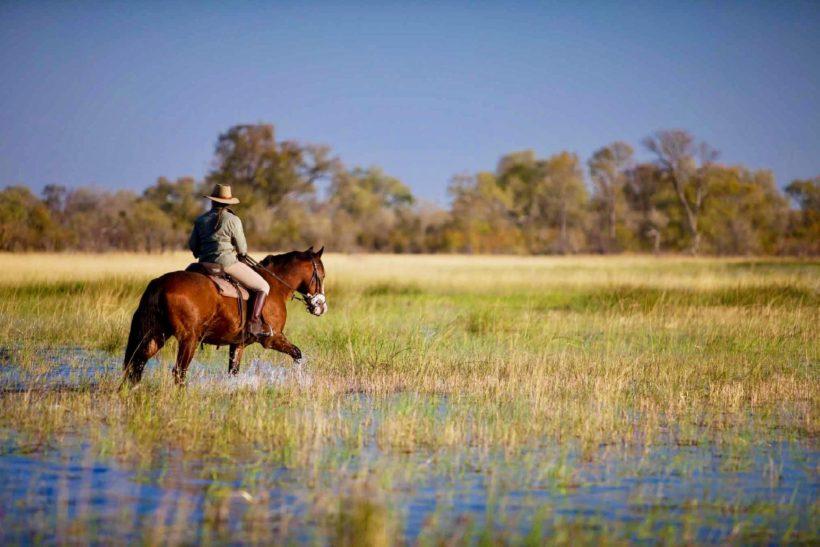 safari a caballo en okavango, safaris a caballo