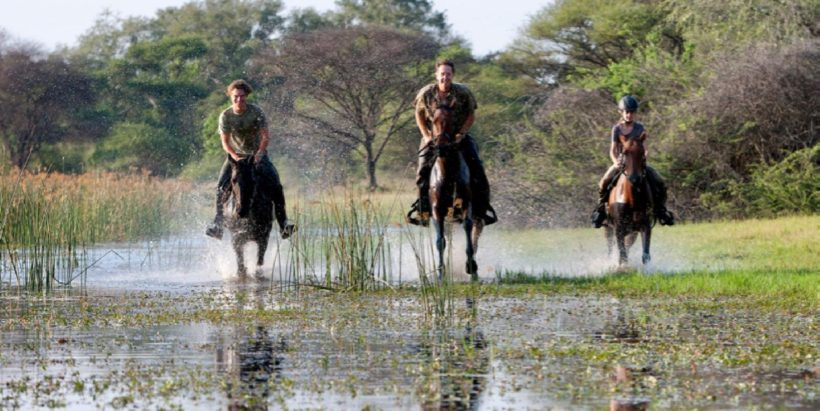 SAFARI A CABALLO OKAVANGO & THAMALAKANE RIVER ADVENTURE (4)