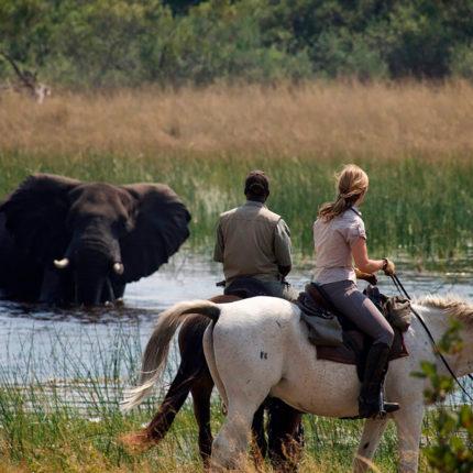 Safari a Caballo Okavango en Fly
