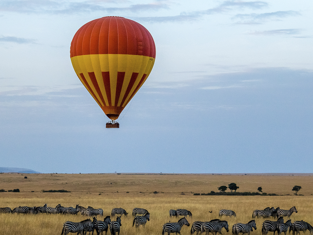 safaris en africa LOS VIAJES DE LUNA DE MIEL MÁS EXÓTICOS