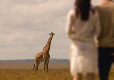 safaris en africa Ideas para un viaje de novios en África