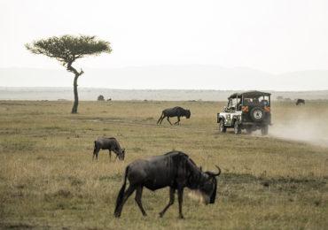 safaris en africa Safari 4x4 en África