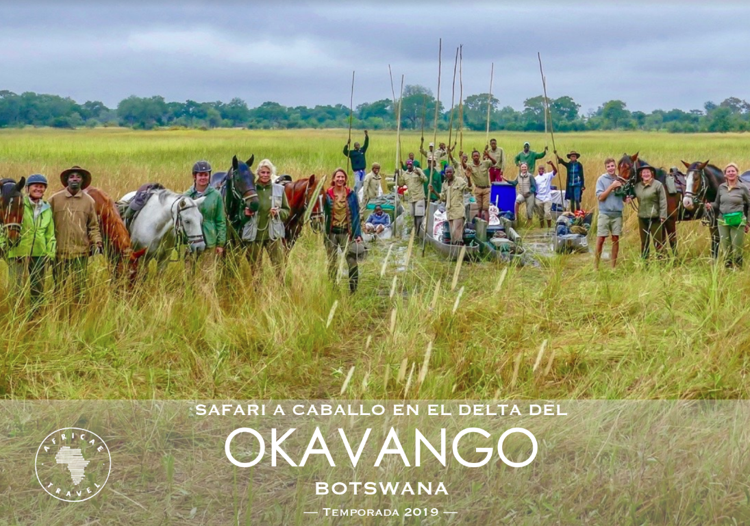 safaris a caballo africae travel, Safari a caballo en okavango