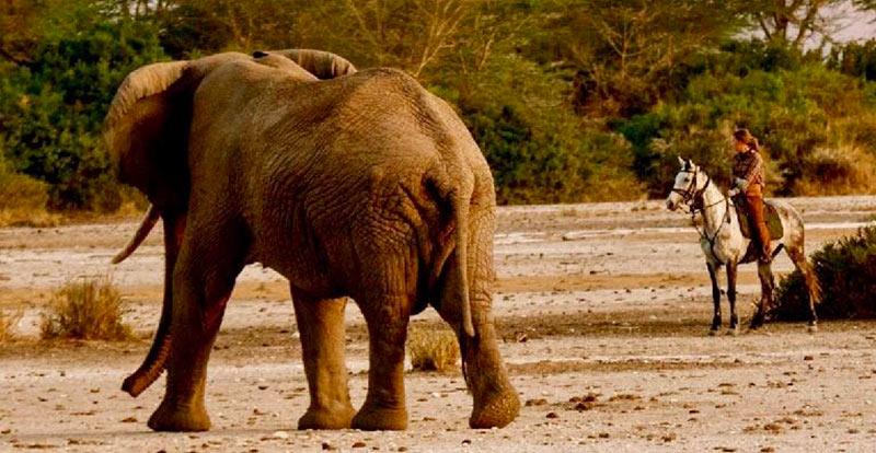 Kilimanjaro-Safari-a-caballo-32
